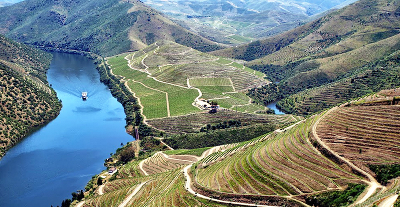 d_strmé vinice podél řeky Douro zdroj_experimentar.pt