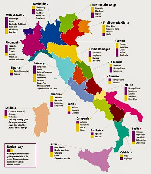 Pruvodce Vinarskymi Regiony Italie Ii Cast Vino Pro Holky